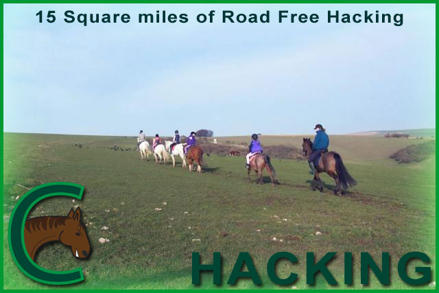 chestnuts riding school hacking picture