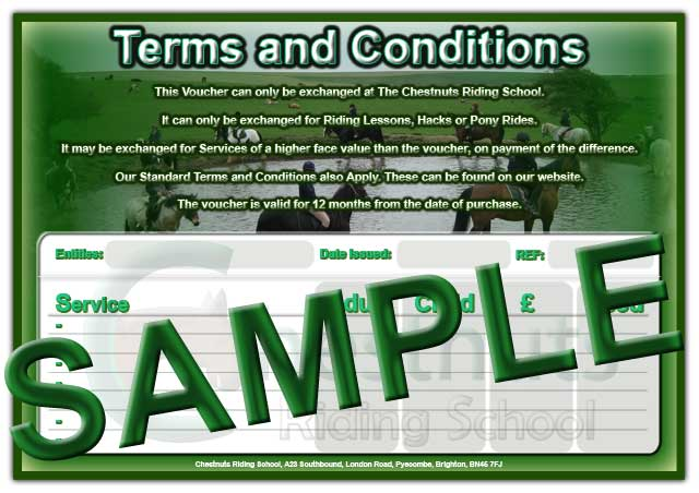 Horse Riding Voucher Reverse Side Christmas 2009 Version Sample