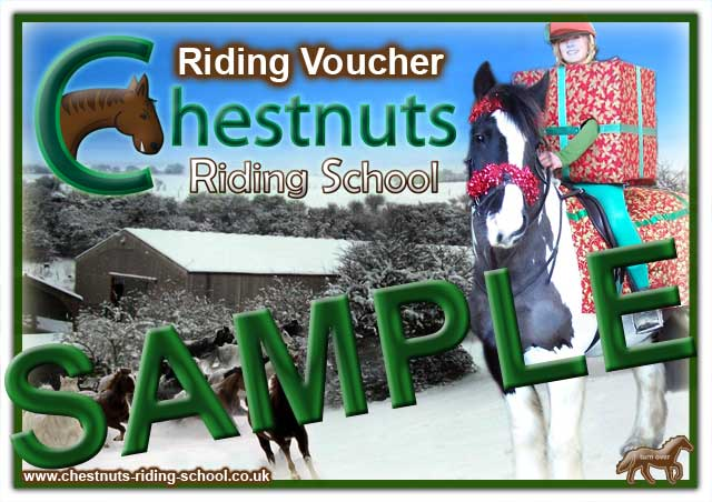 Christmas 2009 Horse Riding Voucher Sample