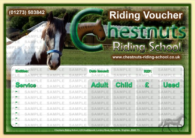 horse riding lessons. Chestnuts Riding School
