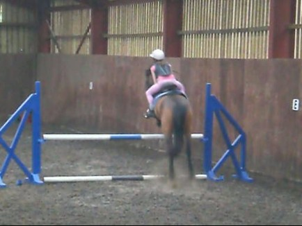 bud and lauren jumping