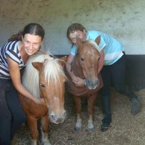 The Shetlands, Pickle &Jess and Beth