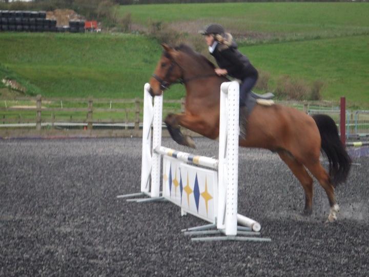 Rupert jumping