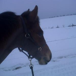 myer loving the snoww