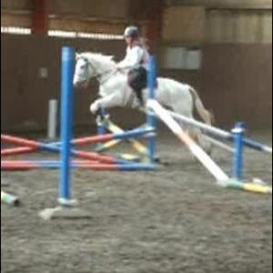Megan And Lucky Jumping At A Training Day :)