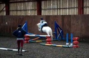 Snowy & Elle jumping agaiinn:)