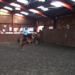 Why Matty is not in the riding school!