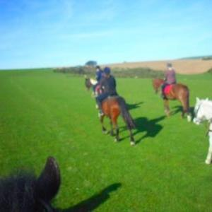 hacking on the downs