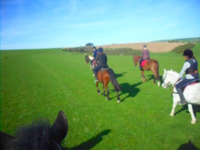 the pony'os x