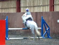 Snoopy and Elle jumping :)