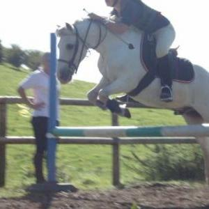 different angle snowy jump number 3/4 chase me charley:)