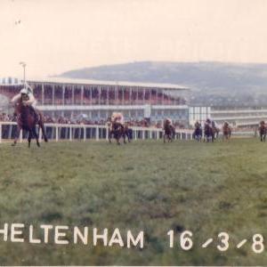 cheltenham-16-03-1988-pragada-01