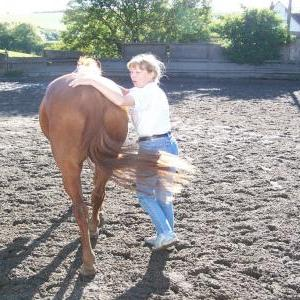 chestnuts-riding-school-01-05-2004+17-25-26+2778