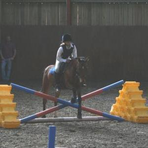 chestnuts-riding-school-104Jumping