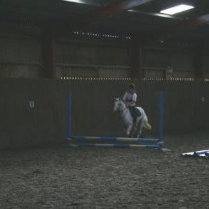 chestnuts-riding-school-118Jumping