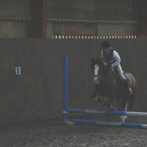 chestnuts-riding-school-123Jumping