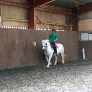 chestnuts-riding-school-21-08-2007-27