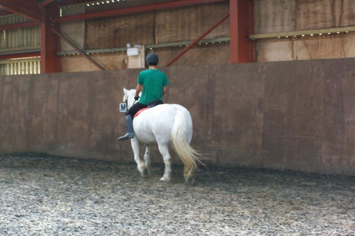 chestnuts-riding-school-21-08-2007-28