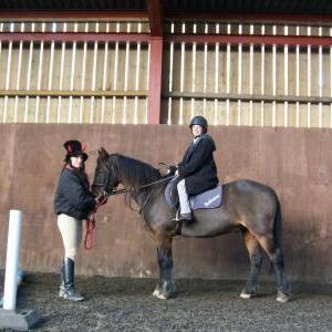 chestnuts-riding-school-31-10-2008-19
