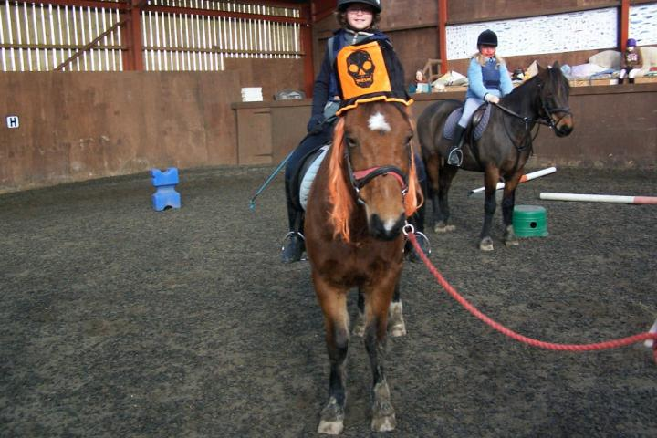 chestnuts-riding-school-31-10-2008-20