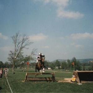 chestnuts-riding-school-Image101