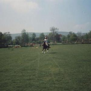 chestnuts-riding-school-Image102