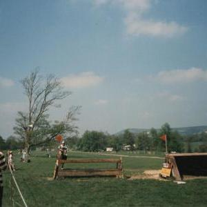 chestnuts-riding-school-Image103