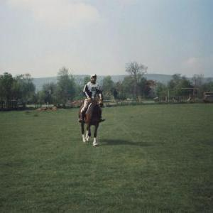 chestnuts-riding-school-Image104