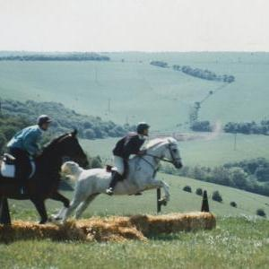 chestnuts-riding-school-Image12