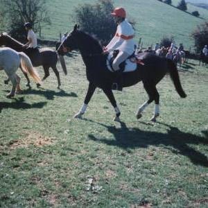 chestnuts-riding-school-Image23