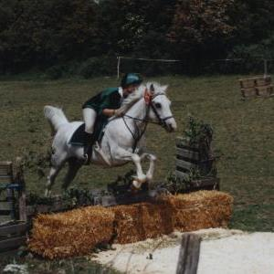 chestnuts-riding-school-Image25