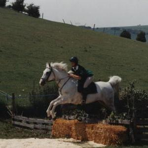 chestnuts-riding-school-Image34