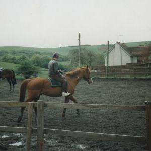 chestnuts-riding-school-Image47