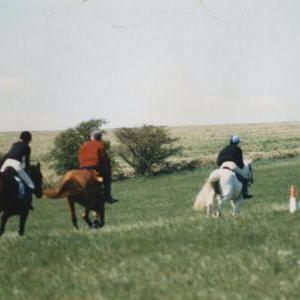 chestnuts-riding-school-Image58