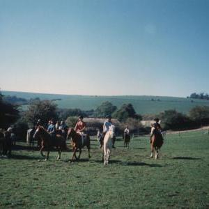 chestnuts-riding-school-Image64
