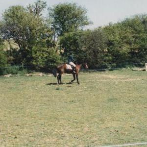 chestnuts-riding-school-Image65