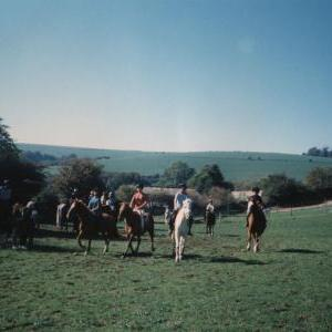 chestnuts-riding-school-Image66