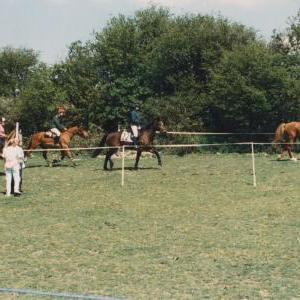 chestnuts-riding-school-Image67