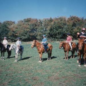 chestnuts-riding-school-Image69