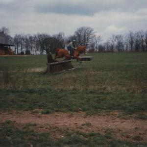 chestnuts-riding-school-Image7