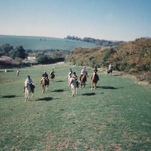 chestnuts-riding-school-Image71