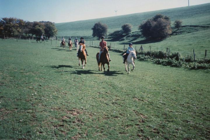 chestnuts-riding-school-Image73