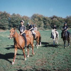 chestnuts-riding-school-Image76