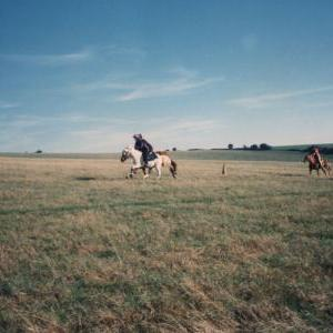 chestnuts-riding-school-Image77