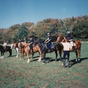 chestnuts-riding-school-Image79