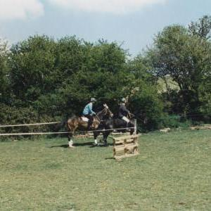 chestnuts-riding-school-Image82