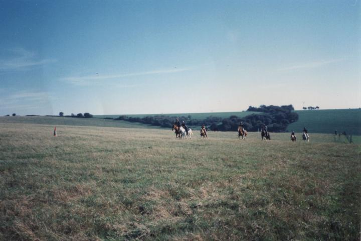 chestnuts-riding-school-Image84