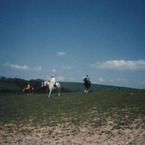 chestnuts-riding-school-Image99