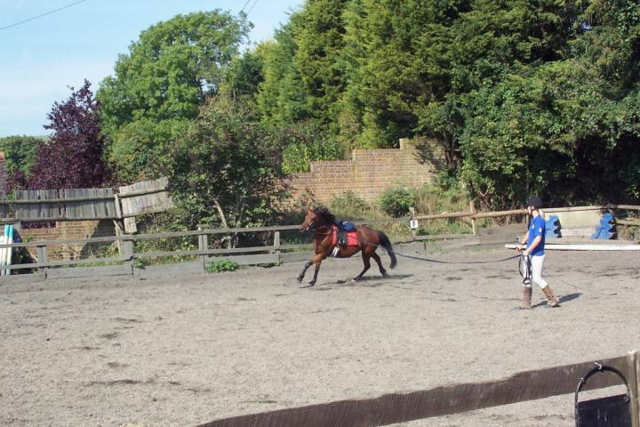 chestnuts-riding-school-chestnuts-08-07-09-2005
