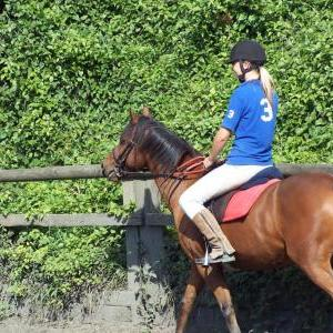 chestnuts-riding-school-chestnuts-11-07-09-2005